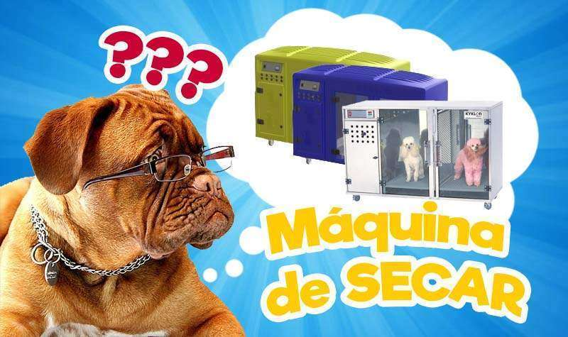 Máquina de secar cachorro